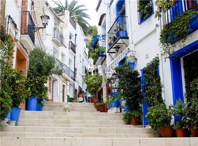 Alicante- Neighborhood USAC