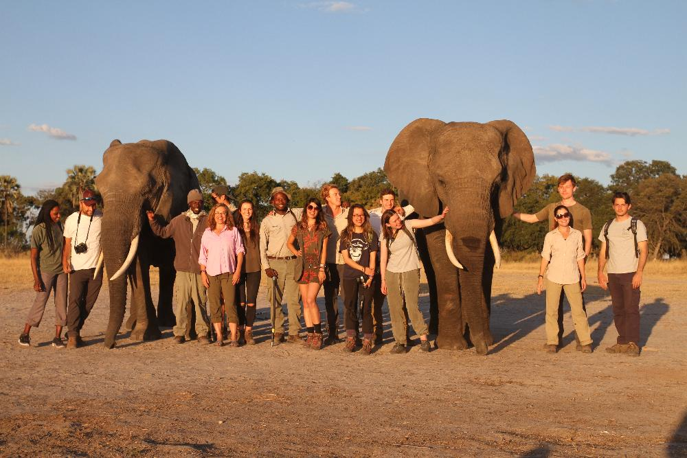 Botswana students w elephants