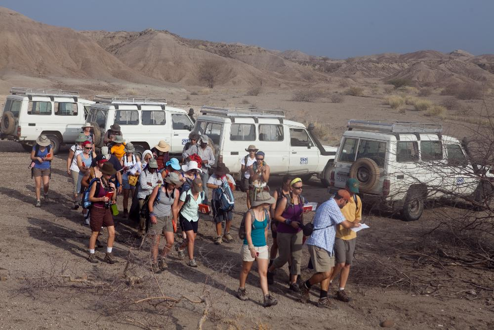 Group at Site
